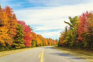 Alt tag not provided for image https://www.airfarewatchdog.com/blog/wp-content/uploads/sites/26/2015/10/cover_autumn_highway-xl-300x200.jpg