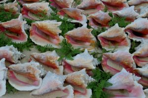 Alt tag not provided for image https://www.airfarewatchdog.com/blog/wp-content/uploads/sites/26/2016/04/conchs-300x198.jpg