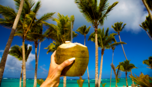 Coconut drink on the beach in the Caribbean