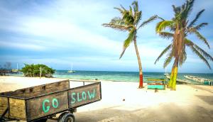 wood cart with go slow message at Caye Caulker Belize