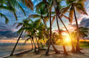 sunset guadeloupe french caribbean