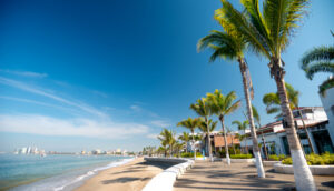 malecon with palm trees in Puerto Vallarta, Mexico
