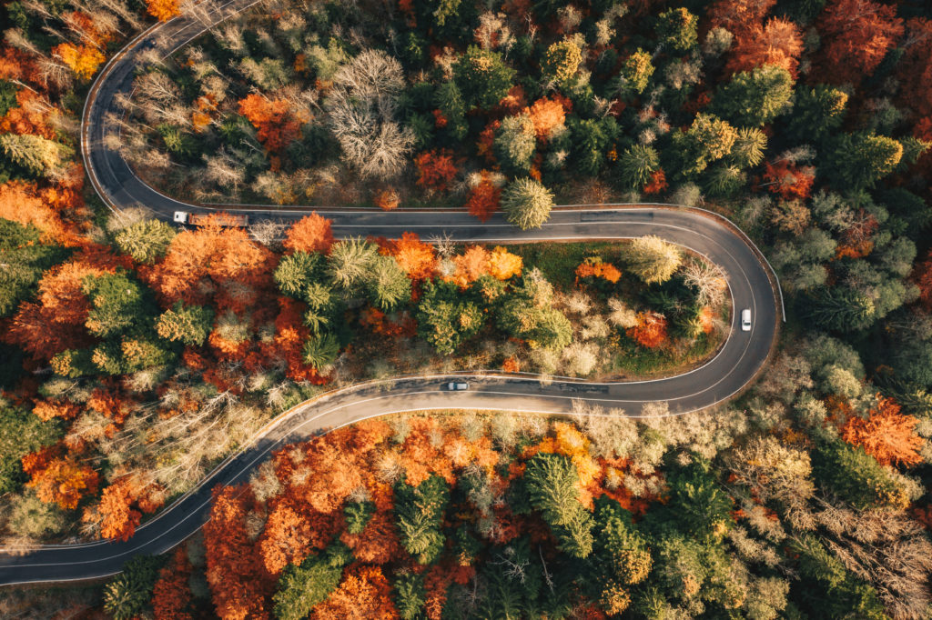 Aerial view of winding road through autumn forest