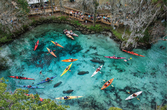 Orlando Outdoors 8 Budget Friendly Adventures From Mild To Wild
