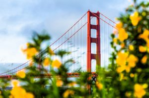 Alt tag not provided for image https://blog.airfarewatchdog.com/uploads/sites/26/2016/12/goldengatebridgeflowers-300x198.jpg
