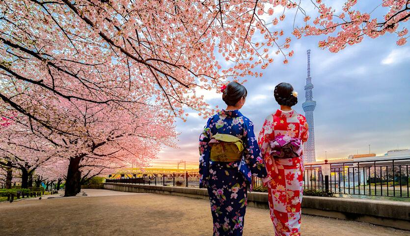 Tokyo Japan Women in Kimonos Walking Cherry Blossoms
