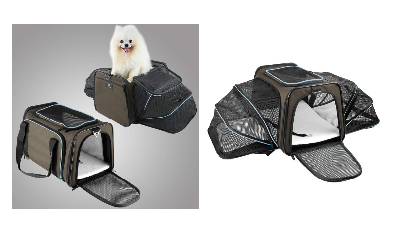 expandable pet carrier, cute white dog sticking out of carrier, open carrier