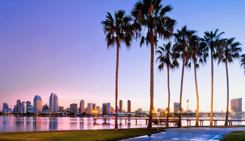 san diego skyline from coronado island palms trees
