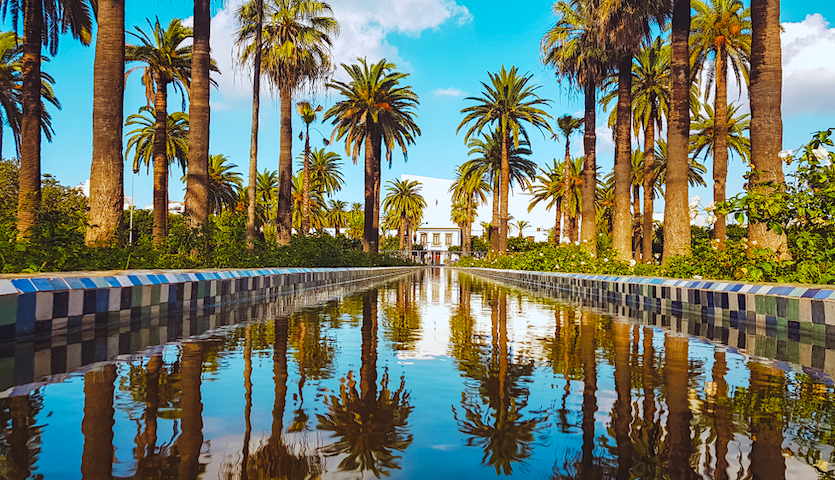 Park in Casablanca Morocco with palm trees and fountain