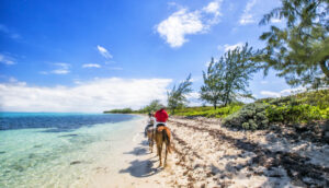 riding horses along the beach on grand cayman island